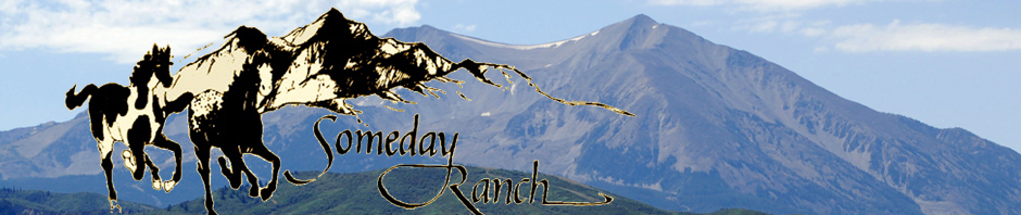 Someday Ranch Colorado Logo